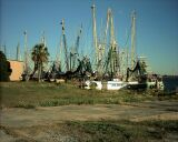 Fisherboats in harbour of Apalachicola.